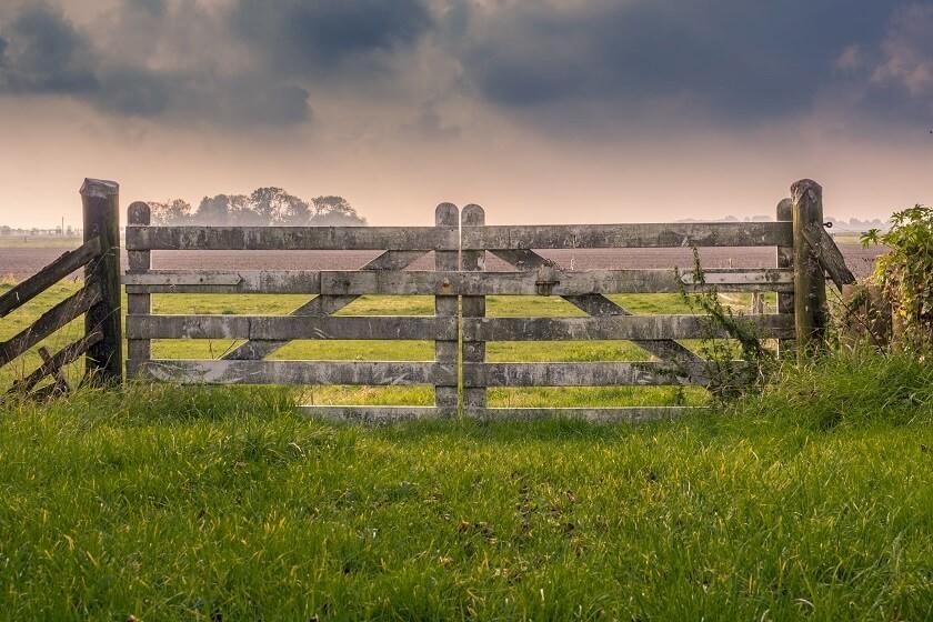 Ausschreibungen für Zaunbau & Zaunanlagen