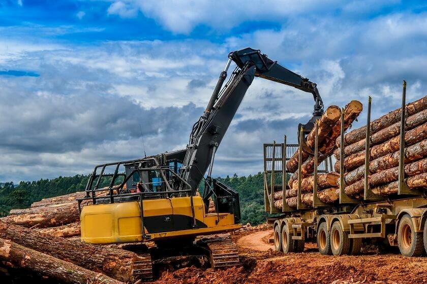 Ausschreibungen für Holzernte & Holzeinschlag