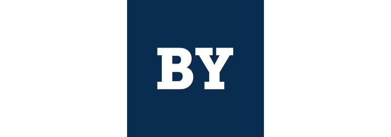 Icon Bayern